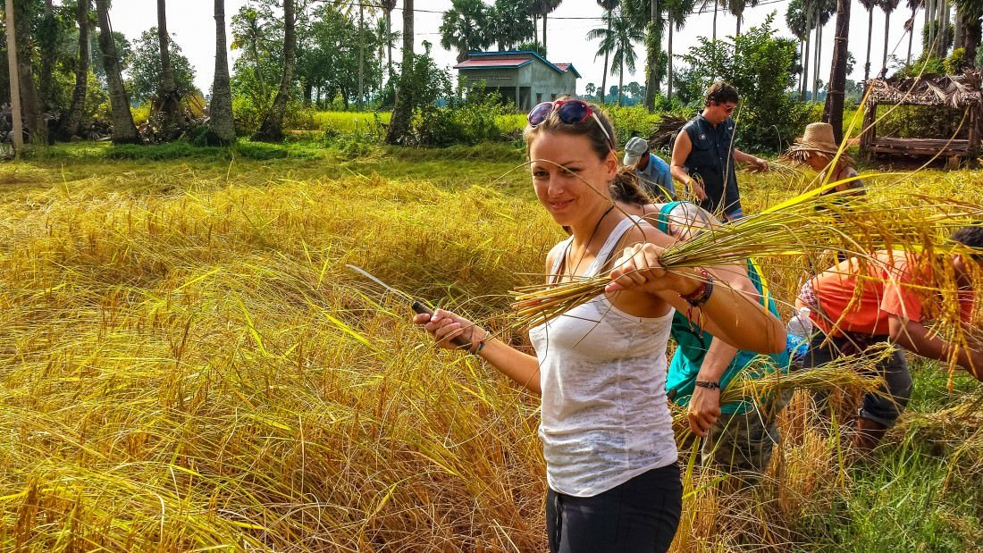 day in the life of a cambodian rice farmer kampot