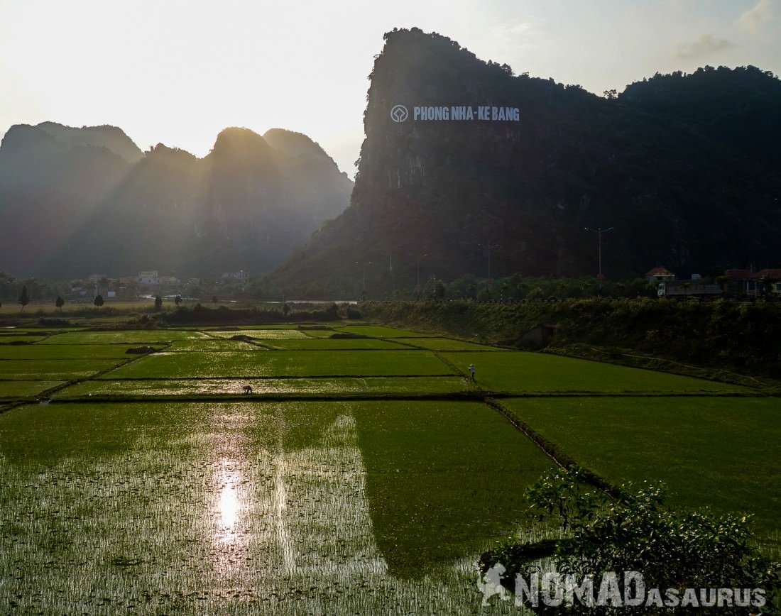 Rice fields of Phong Nha, Vietnam.