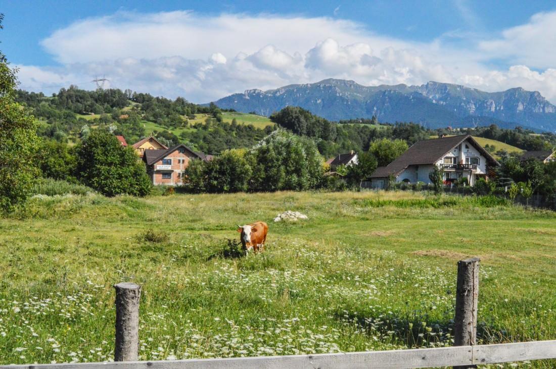 Transylvania landscape, Romania