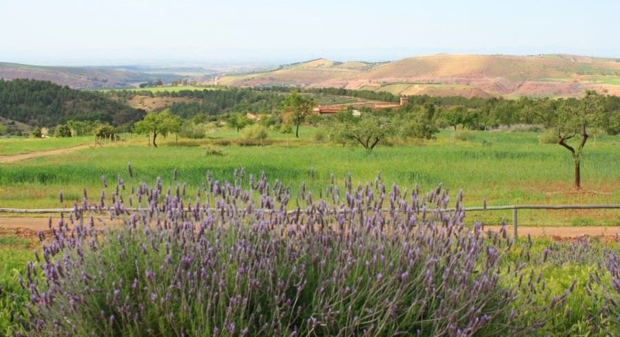 Landscapes in Morocco , Central Morocco
