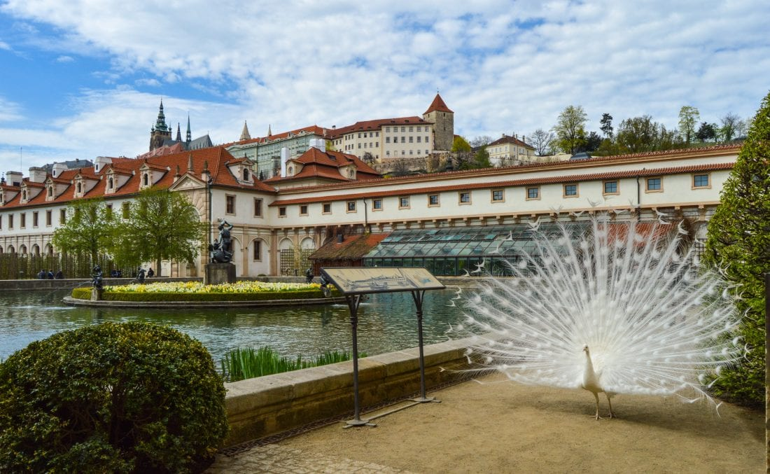 Wallenstein Garden Prague Castle Prague, things to do in Prague