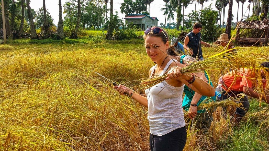 cambodia top travel destinations 2016