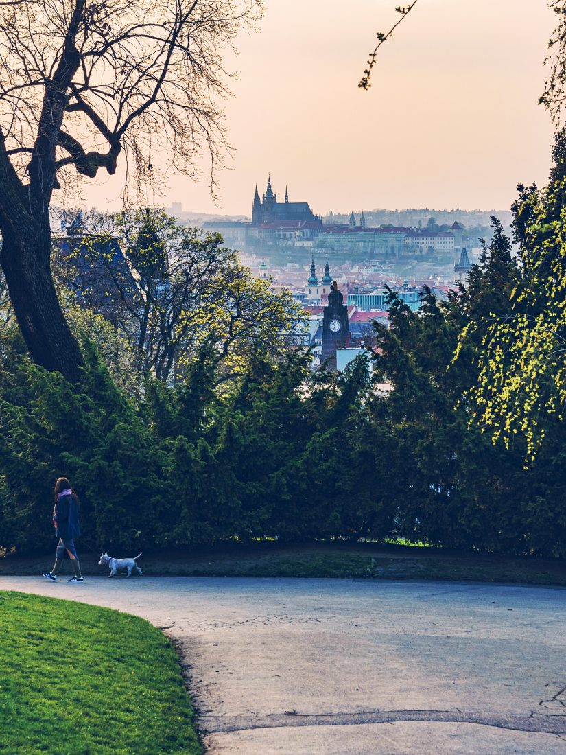 riegrovy sady in vinohrady prague, things to do in prague