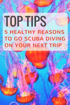 reasons to scuba dive