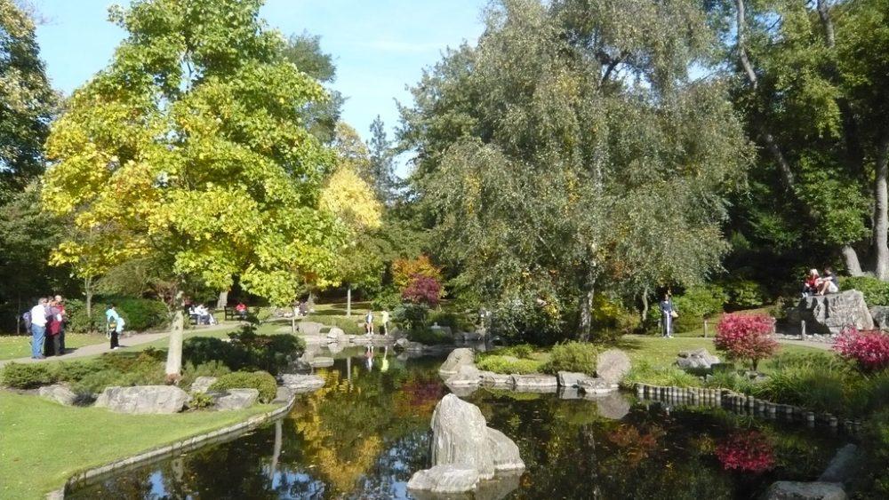 Kyoto Garden - Kensington