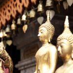 Best Budget Hostels in Bangkok