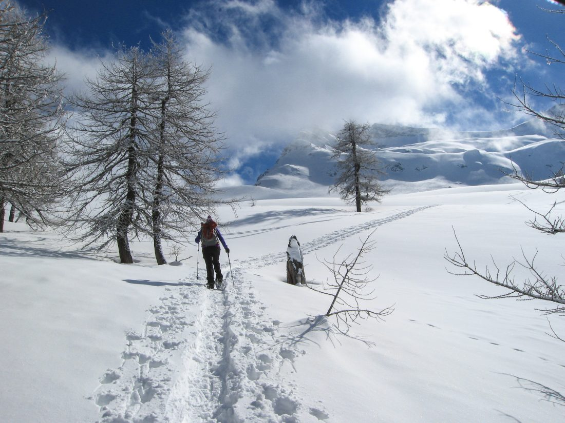 snow shoeing switzerland