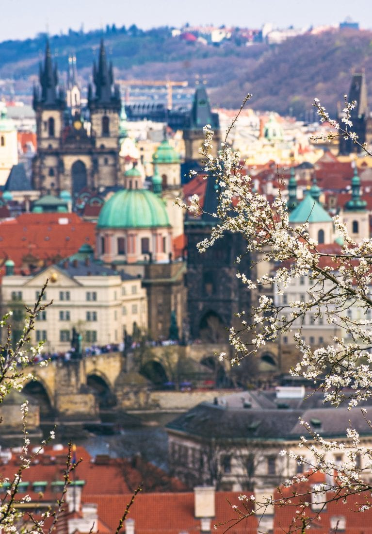 pictures that will make you want to move to prague - spring in petrin park