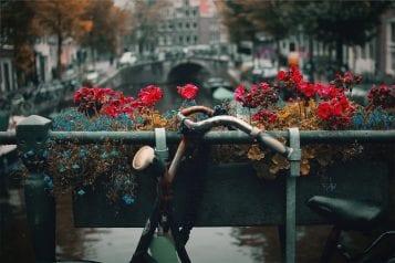Amsterdam Free walking tour