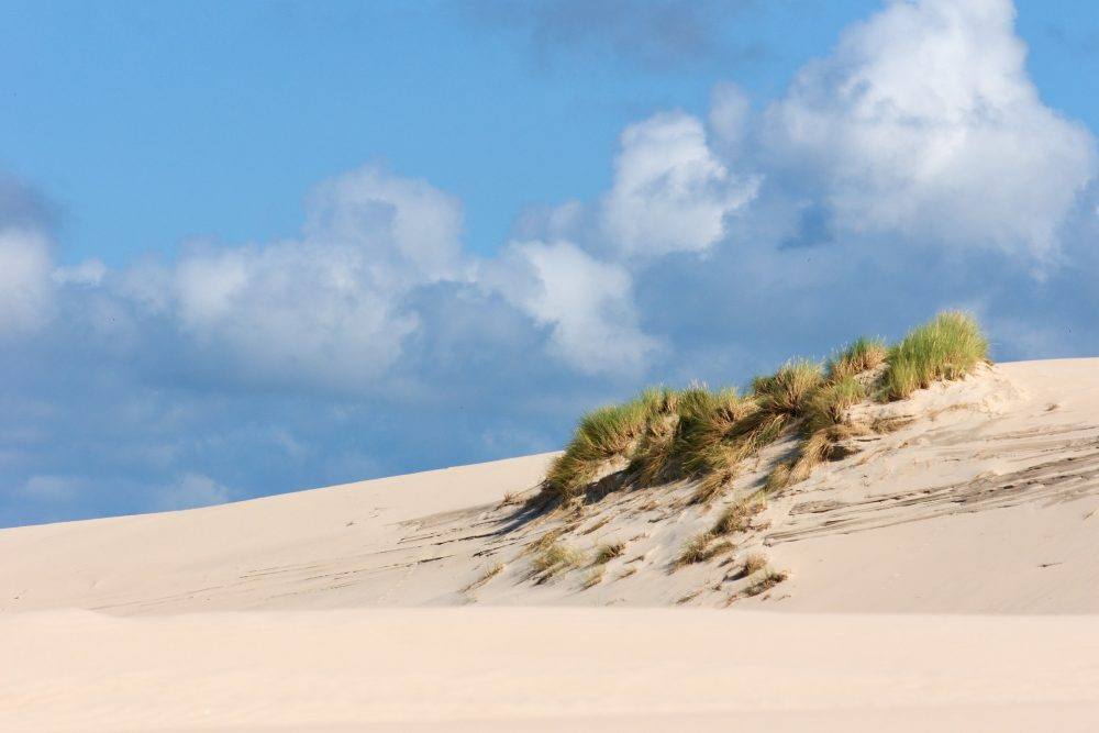 Leba Sand Dunes in Poland