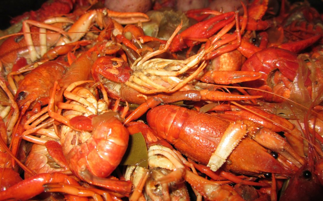 things to do in new orleans - eat crawfish in new orleans