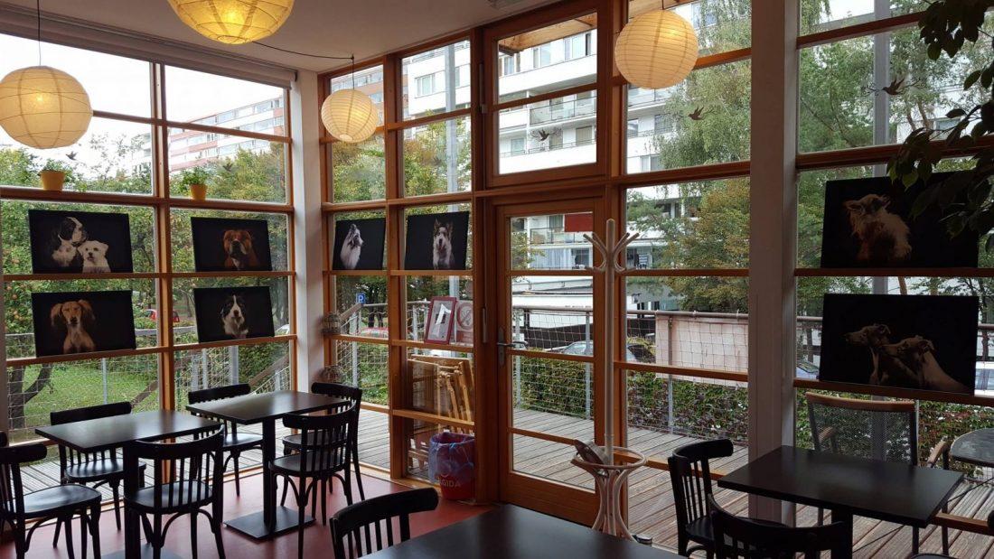 Кафе Старт Прага