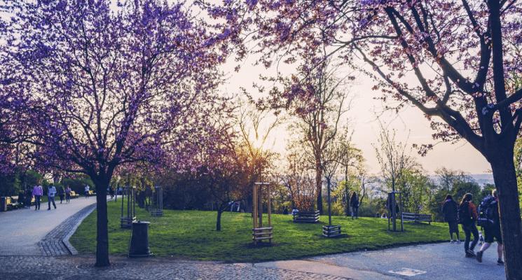 look inside prague ebook parks gardens