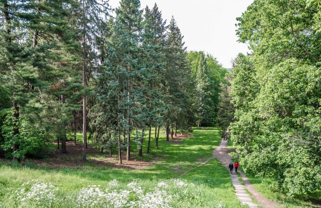 stromovka park prague