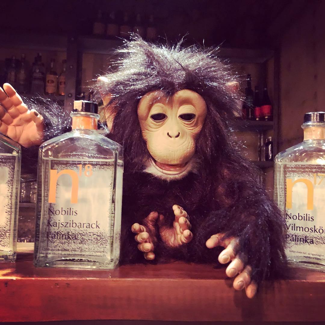 grease monkey budapest