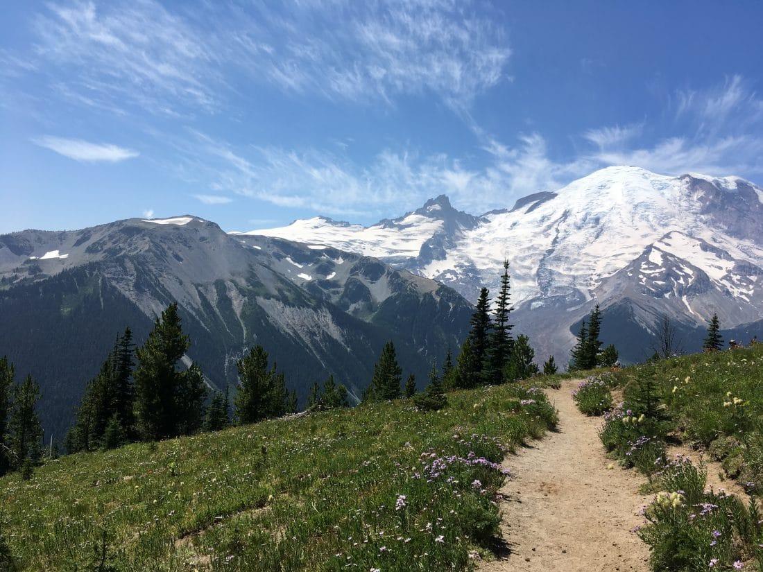 Hiking path in Mount Rainier