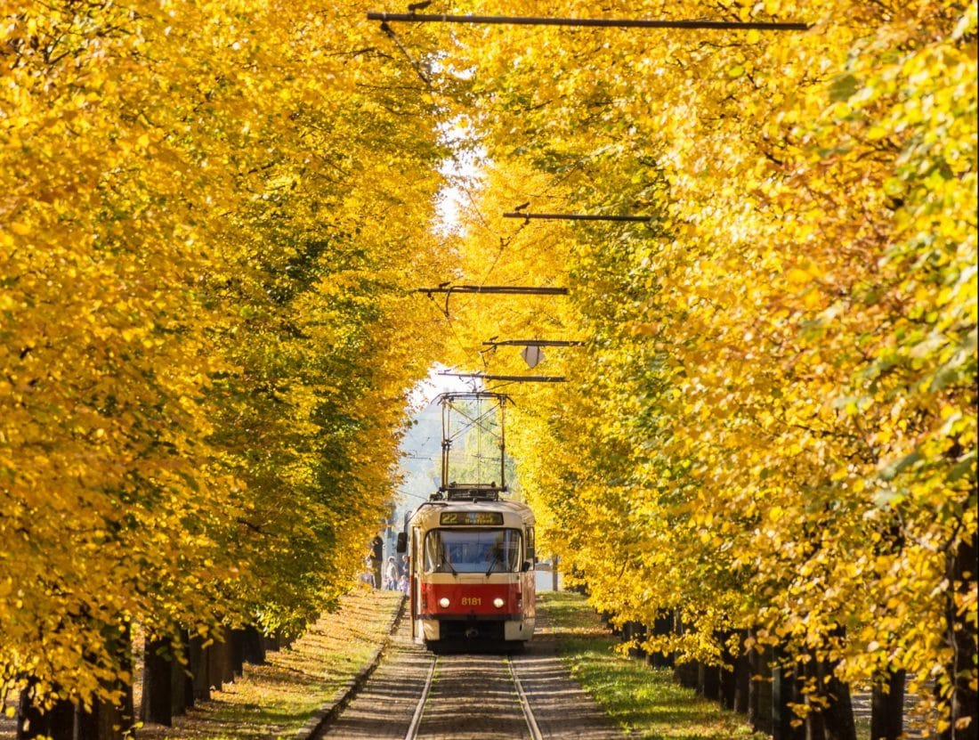 a tram rolling under a canopy of autumn colors in Prague