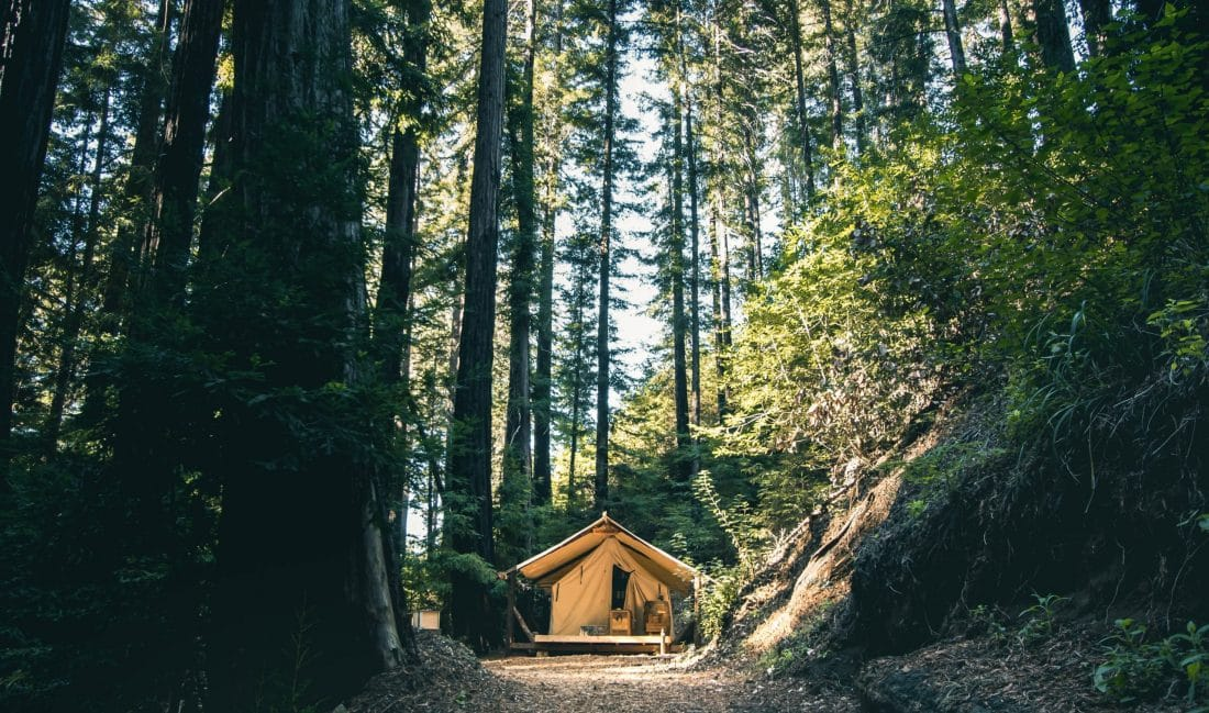 a camping lodge among the redwoods of Big Sur Park, near Monterey California