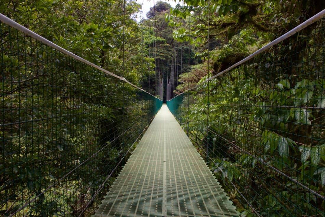 picture of a bridge in Monteverde Cosa Rica