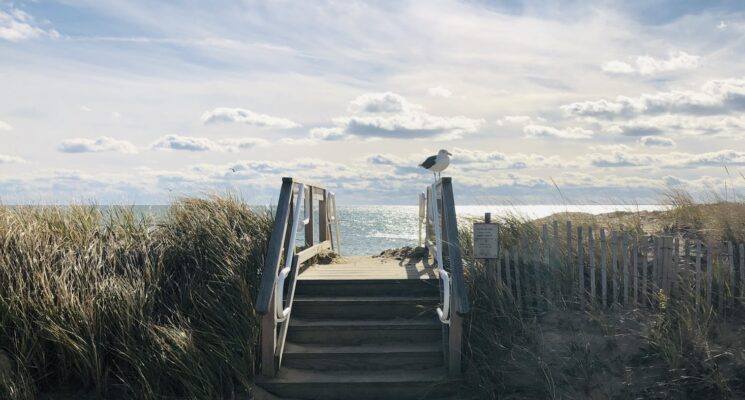 stairs onto a wooden board walk overlooking the ocean in cape cod