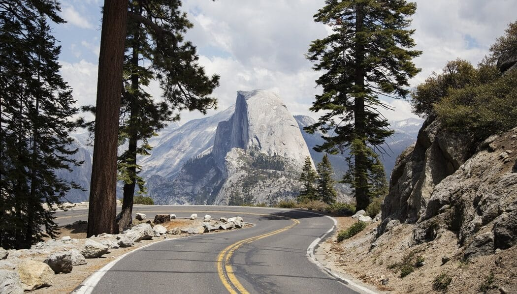 a road on a bend between two trees in Yosemite Park